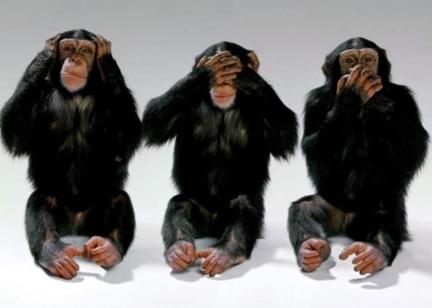 3 monkeys cover their individual eyes, nose, mouth separately.